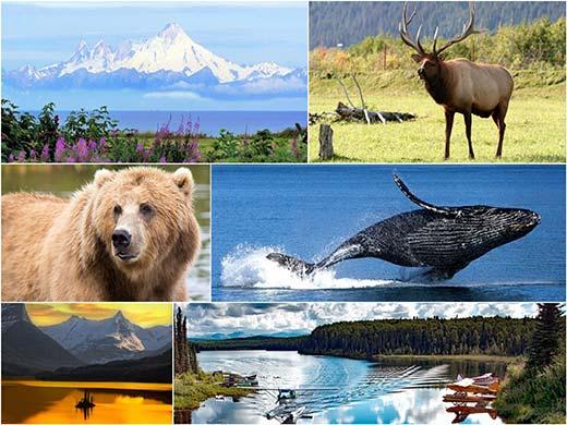 Nagy alaszkai körutazás úticél