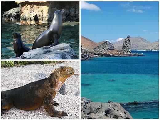 Galapagosz hajóút (dél) hajóút